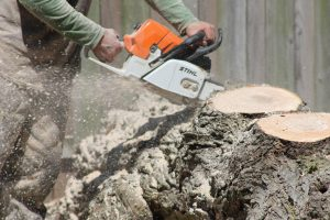 Using chainsaw to separate logs