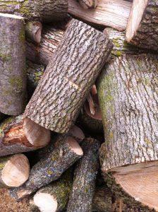 "Ash tree firewood is great wood to burn when ""green"" (freshly cut)"