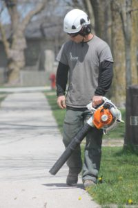 Arborist cleaning the sidewalk after tree care job