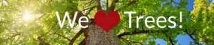 we-love-trees